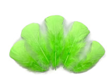 1/4 Lb - Chartreuse Green Turkey T-Base Plumage Wholesale Feathers (Bulk)