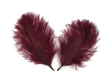 1 Pack - Burgundy Ostrich Small Confetti Feathers 0.3 Oz