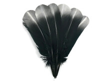 1/4 Lb - Silver Metallic Spray Paint Over Black Tip Turkey Tom Rounds Secondary Wing Quill Wholesale Feathers (Bulk)