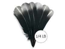 "1/4 lbs. - Silver Metallic Spray Paint Over Black Tipped Tom Turkey Rounds Imitation ""Eagle"" Wholesale Feathers (Bulk)"