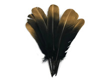 1/4 Lb - Gold Metallic Spray Paint Over Black Tip Turkey Tom Rounds Secondary Wing Quill Wholesale Feathers (Bulk)