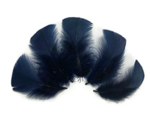 1/4 Lb - Navy Blue Turkey T-Base Wholesale Body Plumage Feathers (Bulk)