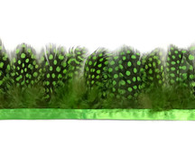 1 Yard - Chartreuse Green Guinea Hen Plumage Feather Trim