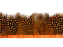 1 Yard - Orange Guinea Hen Plumage Feather Trim