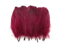 1 Pack - Claret Goose Nagoire Loose Feather - 0.25 Oz