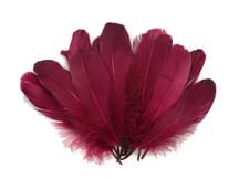 1/4 Lb - Claret Goose Nagoire Wholesale Feathers (Bulk)