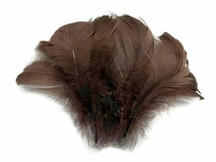 "1/4 Lb - 2-3"" Brown Goose Coquille Loose Wholesale Feathers (Bulk)"