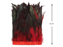 "1 Yard - 10-12"" Red Dyed Over Natural Coque Tails Long Feather Trim (Bulk)"