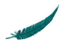5 Pieces - Teal Blue Long Ostrich Nandu Trimmed Feathers