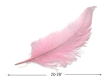 "10 Pieces - 20-28"" Light Pink Ostrich Spads Large Wing Feathers"