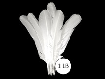 1 Lb - White Turkey Rounds Wing Quill Wholesale Feathers (Bulk)