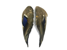 1 Pair - Iridescent Blue Complete Mallard Duck Wing Feather Set