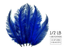 1/2 Lb - Royal Blue Mini Spads Ostrich Wholesale Chick Body Feathers (Bulk)