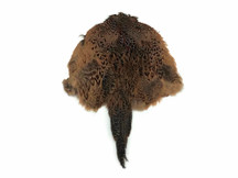 1 Piece - Complete Natural Ringneck Pheasant Hen Pelt With Tail