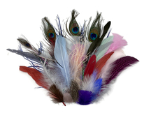 Collection 117 - Mix Random Feather Sample Pack (Bulk)