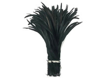 "1/2 Yard -  14-16"" Black Strung Natural Bleach & Dyed Rooster Coque Tail Wholesale Feathers (Bulk)"