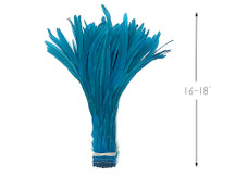 """1/2 Yard -  16-18"""" Turquoise Blue Strung Natural Bleach & Dyed Rooster Coque Tail Wholesale Feathers (Bulk)"""