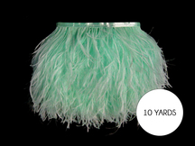 10 Yards - Mint Green Ostrich Fringe Trim Wholesale Feather (Bulk)