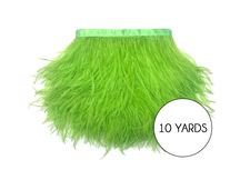 10 Yards - Lime Green Ostrich Fringe Trim Wholesale Feather (Bulk)