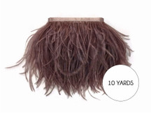 10 Yards - Mocha Ostrich Fringe Trim Wholesale Feather (Bulk)