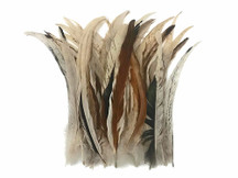 "Wholesale Pack - 10-14"" Natural Beige Mix Coque Tail Strung Rooster Feathers 2 Oz. (Bulk)"