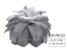 "100 Pieces - 8-10"" Silver Gray Ostrich Dyed Drab Body Wholesale Feathers (Bulk)"
