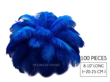 "100 Pieces - 8-10"" Royal Blue Ostrich Dyed Drab Body Wholesale Feathers (Bulk)"