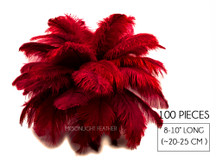 "100 Pieces - 8-10"" Burgundy Ostrich Dyed Drab Body Wholesale Feathers (Bulk)"