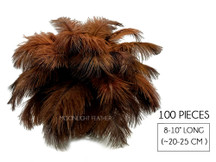"100 Pieces - 8-10"" Brown Ostrich Dyed Drab Body Wholesale Feathers (Bulk)"