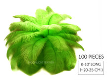 "100 Pieces - 8-10"" Lime Green Ostrich Dyed Drab Body Wholesale Feathers (Bulk)"