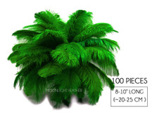 """100 Pieces - 8-10"""" Kelly Green Ostrich Dyed Drab Body Wholesale Feathers (Bulk)"""