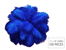 """100 Pieces - 11-13"""" Royal Blue Ostrich Drabs Wholesale Body Feathers (Bulk) Centerpiece Costume Craft Supply"""