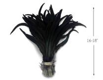"""1/8 Lb -  16-18"""" Natural Black Half Bronze Coque Tail Strung Wholesale Feathers (Bulk)"""