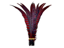 "5 Pieces - 25-30"" Burgundy Zebra Lady Amherst Pheasant Tail Super Long Feathers"