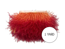 1 Yard - Sunset Orange Ombre Ostrich Fringe Trim Wholesale Feather (Bulk)
