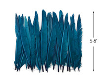 1 Pack - Teal Blue Duck Primary Wing Pointer Feathers 0.50 Oz.