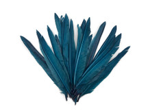 1/4 Lbs - Teal Blue Duck Pointer Primary Wing Wholesale Feathers (Bulk)