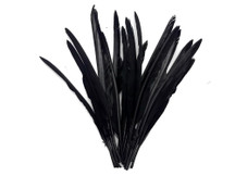 1/4 Lb. - Black Goose Pointers Long Primaries Wing Wholesale Feathers (Bulk)