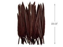 10 Pieces - Brown Goose Pointers Long Primaries Wing Feathers