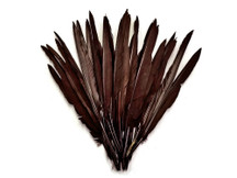 1/4 Lb. - Brown Goose Pointers Long Primaries Wing Wholesale Feathers (Bulk)