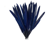 1/4 Lb. - Navy Blue Goose Pointers Long Primaries Wing Wholesale Feathers (Bulk)