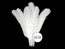 10 Lbs. - White Turkey Rounds Wing Quill Wholesale Feathers (Bulk)