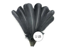 1 Lb. - Silver Gray Turkey Tom Rounds Secondary Wing Quill Wholesale Feathers (Bulk)