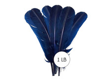 1 Lb. - Navy Blue Turkey Tom Rounds Secondary Wing Quill Wholesale Feathers (Bulk)