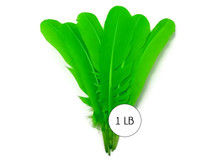 1 Lb. - Lime Green Turkey Tom Rounds Secondary Wing Quill Wholesale Feathers (Bulk)
