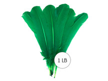 1 Lb. - Kelly Green Turkey Tom Rounds Secondary Wing Quill Wholesale Feathers (Bulk)
