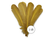 1 Lb. - Antique Gold Turkey Tom Rounds Secondary Wing Quill Wholesale Feathers (Bulk)