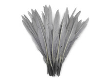1/4 Lb. - Silver Gray Goose Pointers Long Primaries Wing Wholesale Feathers (Bulk)