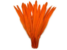 1/4 Lb. - Orange Goose Pointers Long Primaries Wing Wholesale Feathers (Bulk)