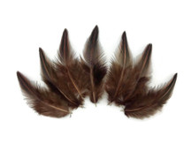 10 Pieces - Brown Jungle Cock Loose Plumage Feather